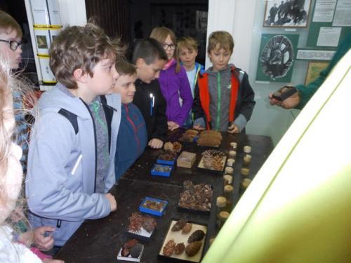 Ekologický deň vmúzeu - 7.oddelenie - 4