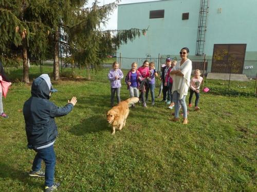 Zábavné popoludnie so psíkom